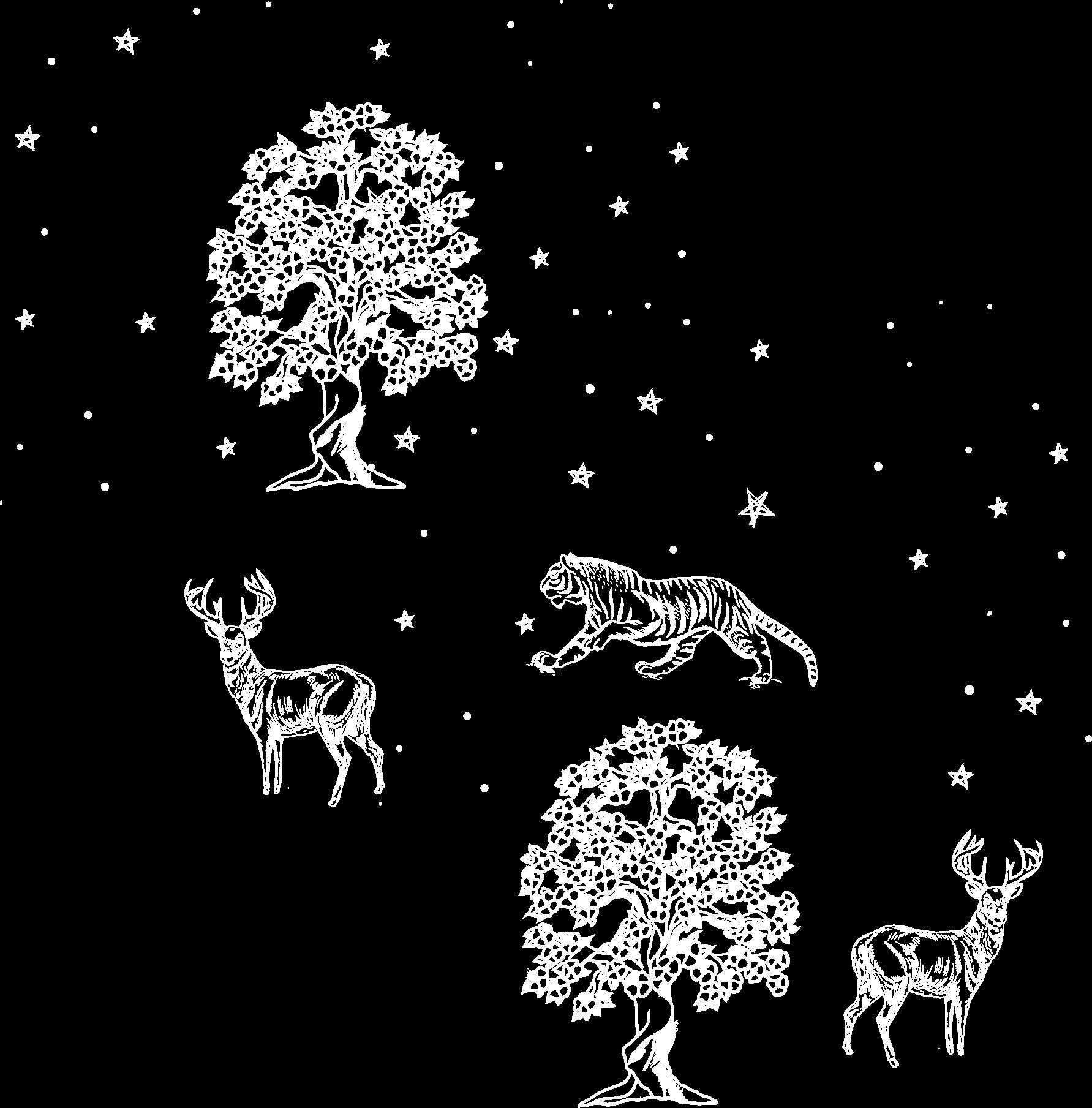 all animal image